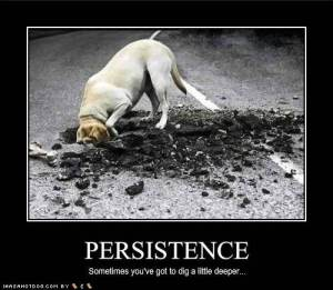 Persistence Dog
