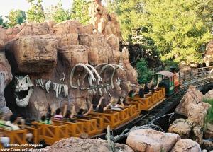 A roller coaster ride!