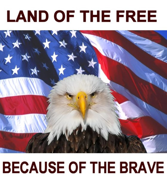 veterans day 4