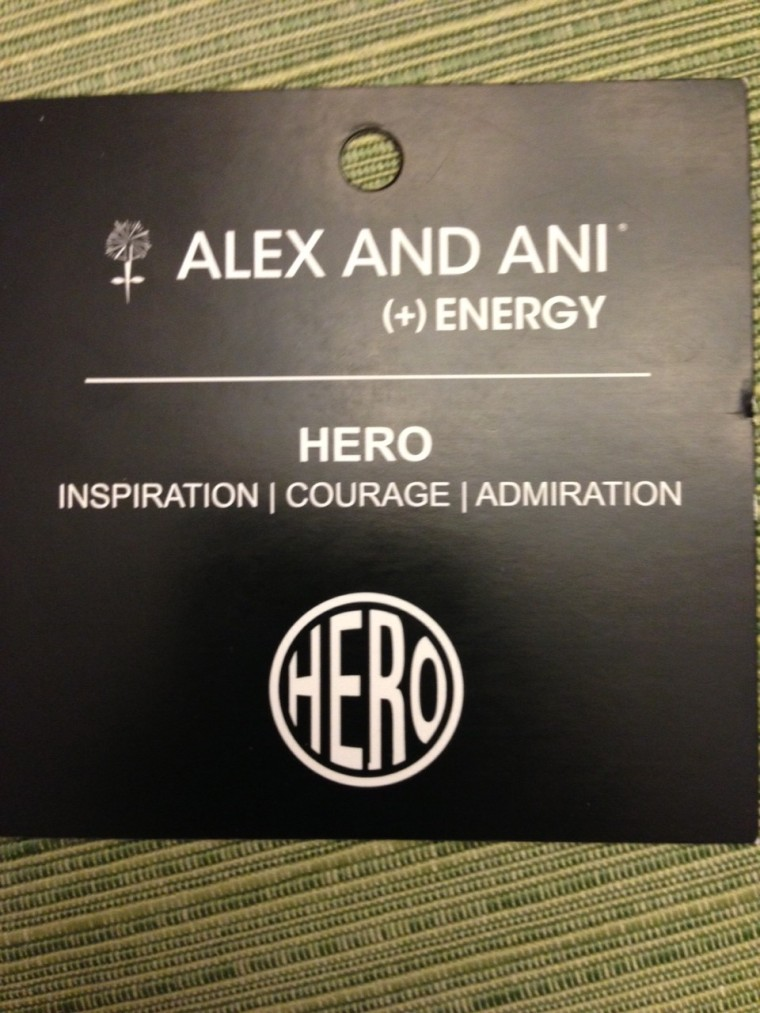 Alex and ANI hero front