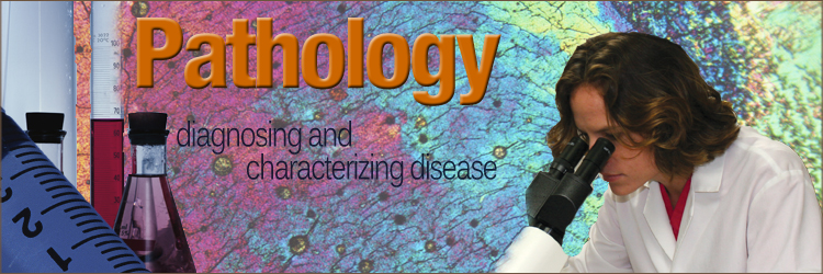 PathologyBanner