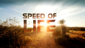 speed of life 2