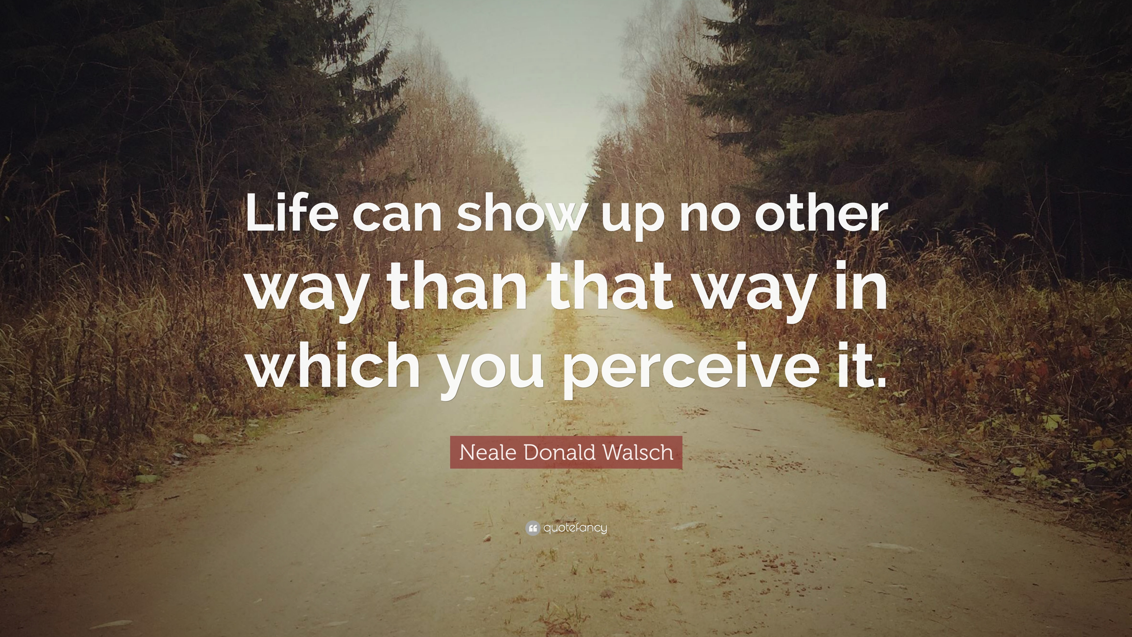 322261-neale-donald-walsch-quote-life-can-show-up-no-other-way-than-that